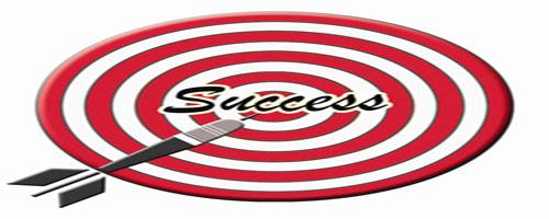 Bulls Eye Target Success