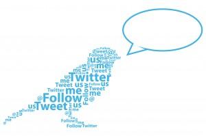 Social-Media-Bird