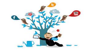 Social Media Niche Marketing Techniques