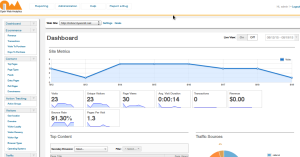 Open Web Analytics Example