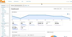 Open Web Analytics Example